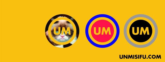Cabecera UNMISIFU